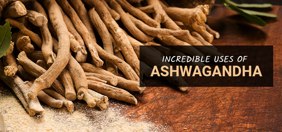 You may find a cure in Ashwagandha for your anxiety disorder