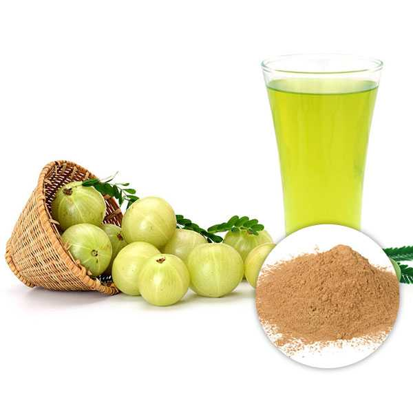 Amla Extract Powder 40% Tannins Titrimetry