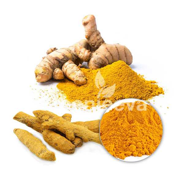 Organic Turmeric Extract powder 95% curcuminoids  HPLC