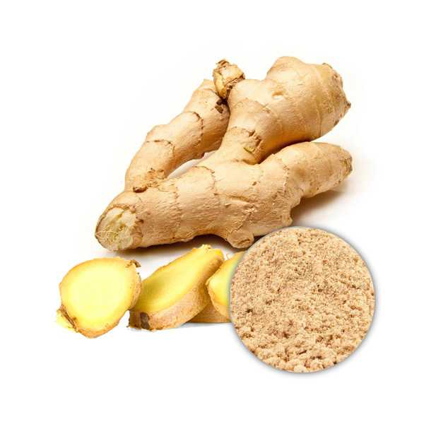 Ginger Extract Powder 5% Gingerol, HPLC