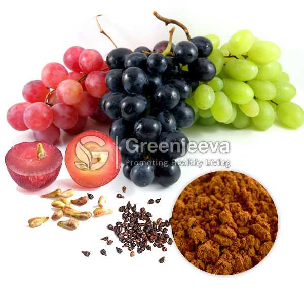 Grape Seed Extract Powder 98% OPC, UV