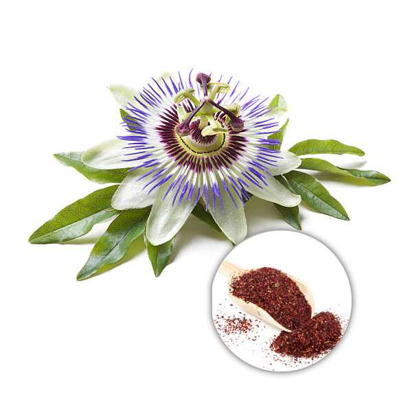 Organic Passion Flower Extract Powder 4:1