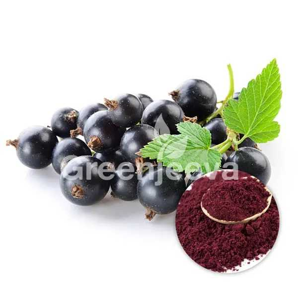 Organic Black Currant Powder