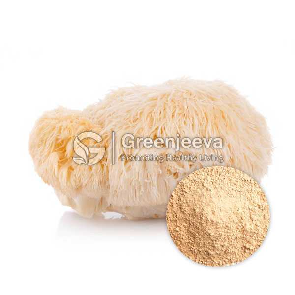 Organic Lion'S Mane Powder