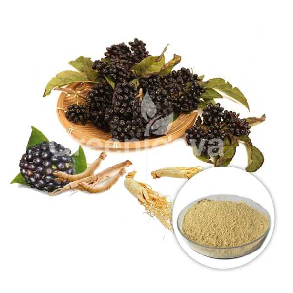 Siberian Ginseng Root Powder