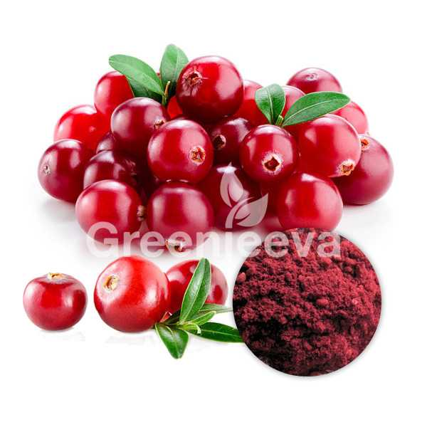 ORGANIC CRANBERRY FRUIT EXTRACT POWDER 4:1