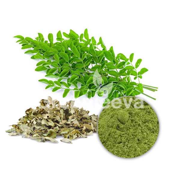 Organic Moringa Leaf Extract Powder 4:1
