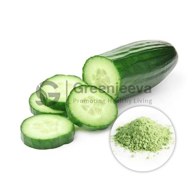 Cucumber Fruit Extract Powder 10:1