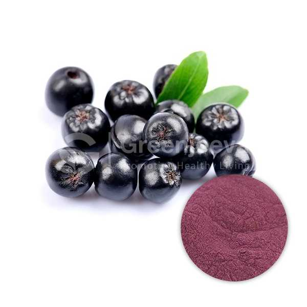 Aronia Extract Powder 4:1