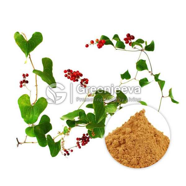 Sarsaparilla Extract Powder 4:1