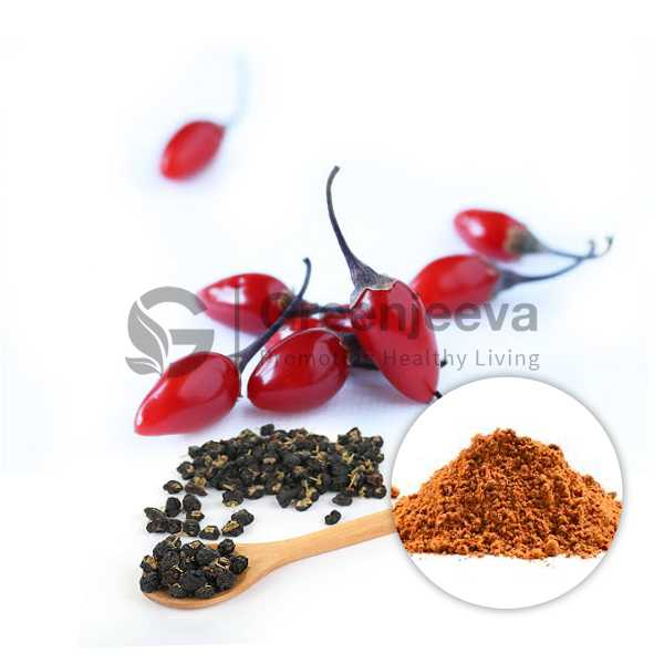 Wolfberry Fruit Extract Powder 10:1, TLC