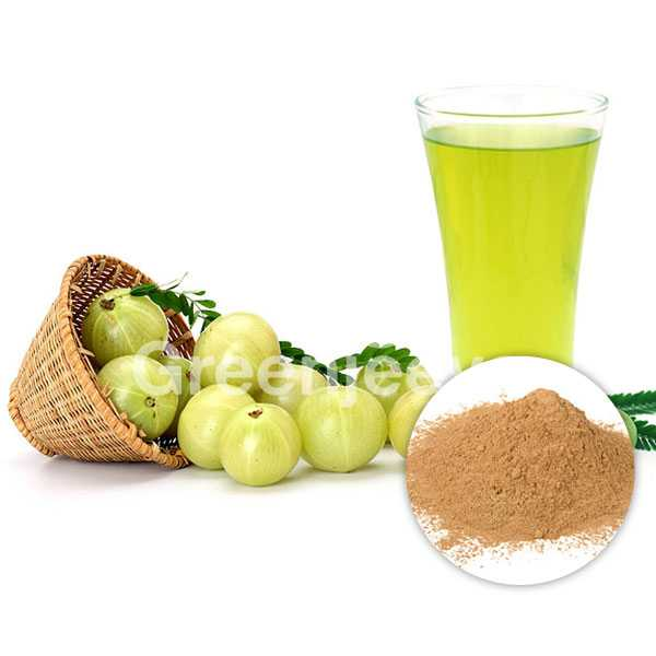 Amla Extract Powder 40% Tannin