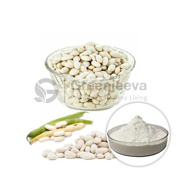 White Kidney Bean Extract Powder 4:1